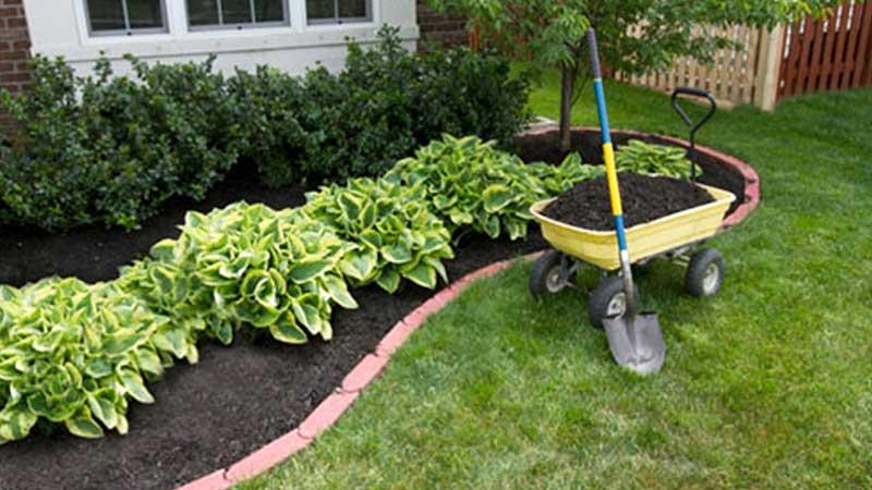 residential gardener home gardening