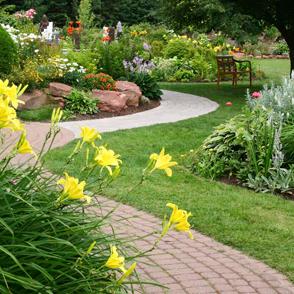 barry-murphy-garden-maintenance-testimonial