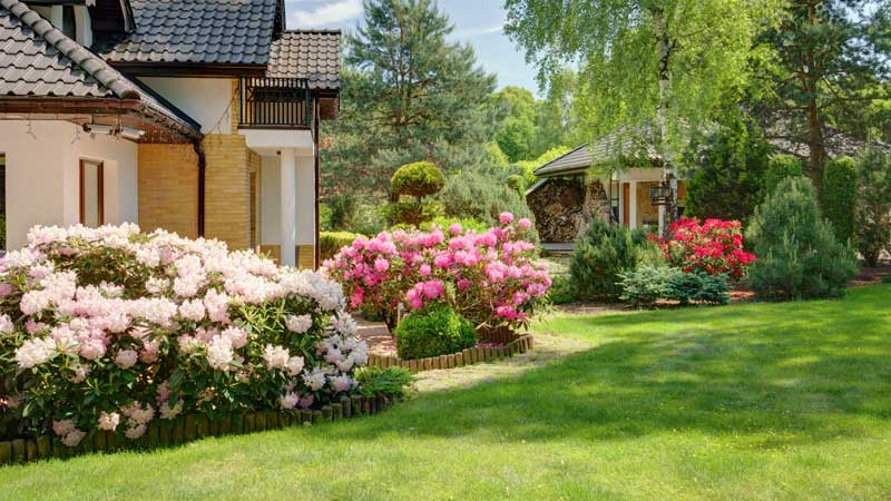commercial gardening services dublin ireland