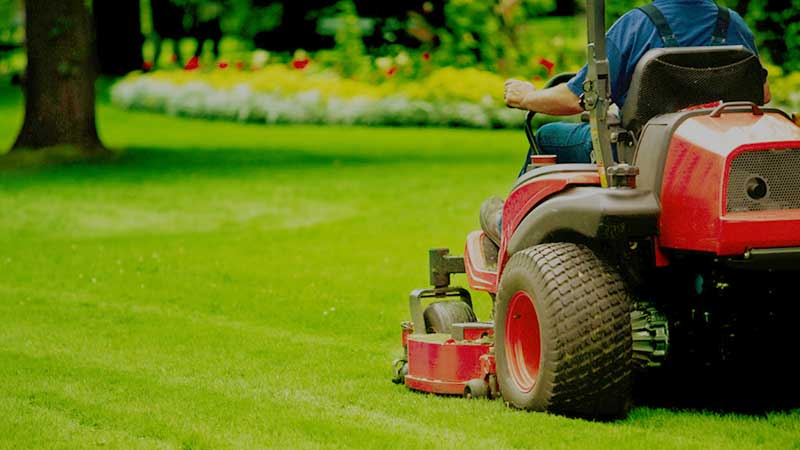 lawn maintenance commercial gardening